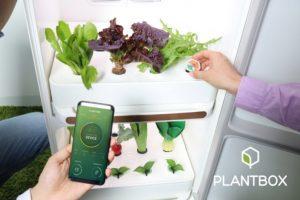 Из бизнес-инкубатора Samsung C-Lab вышло три новые компании»